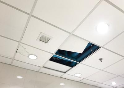 Plafondpanelen